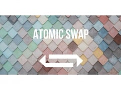 Guide to atomic swap - trustless cross-chain trading